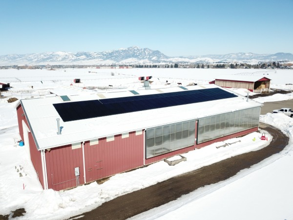 Solar array on the Equestrian Center arena